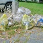 Kiez-Putz Wilhelmstadt 06-2015 Müll