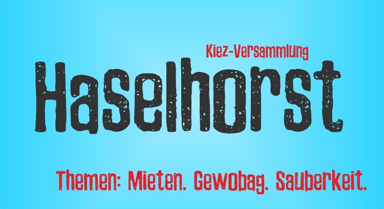 Kiezversammlung Haselhorst
