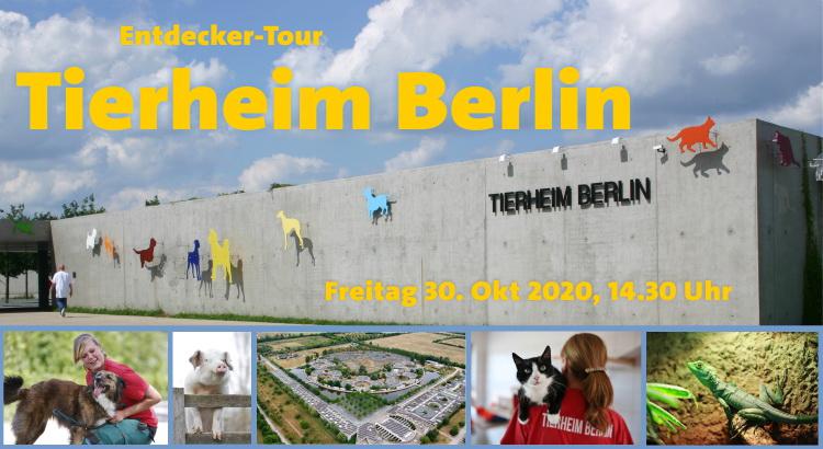 Von Affen bis Zebrafinken: Exklusive Führung durch das Tierheim Berlin am 30. Oktober 2020 mit Daniel Buchholz, MdA 1